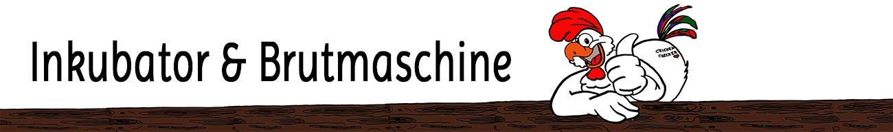 inkubator-brutmaschine.de