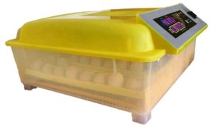 Inkubator Hühnereier